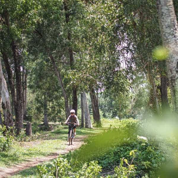 Cyclist riding through a wood during a tour of Cambodia