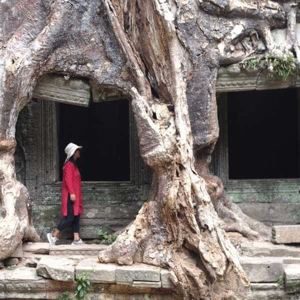 Lady in red beneath a tree at Angkor Wat