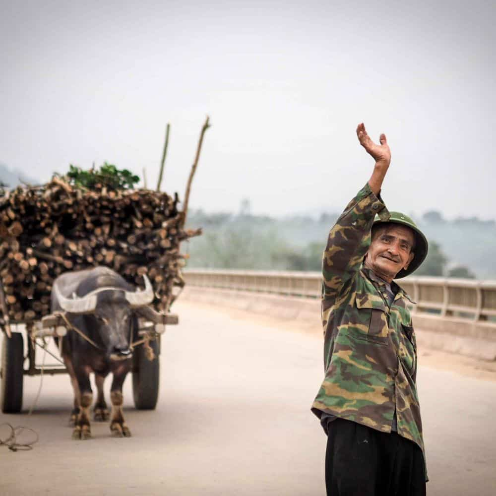 An old Vietnamese man and his buffalo cart