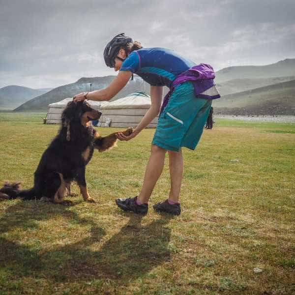 A cyclist meets a dog at a Mongolian ger camp