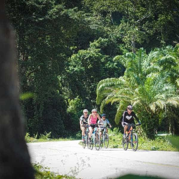 Cyclists touring in South Thailand