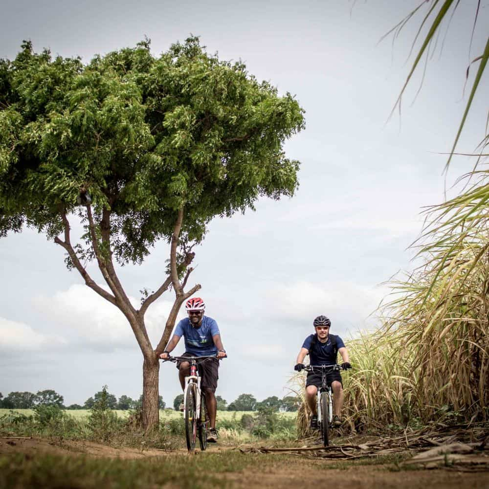 cyclists touring in Sri Lanka