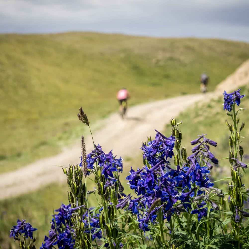 Mongolian adventure cycling holiday - cyclists